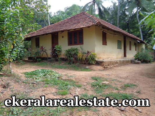 peyad real estate properties for sale land plots for sale in peyad trivandrum