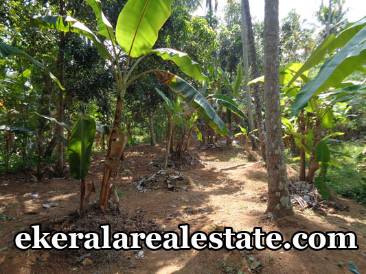 attingal properties sale olx real estate Attingal land plots sale in attingal trivandrum kerala