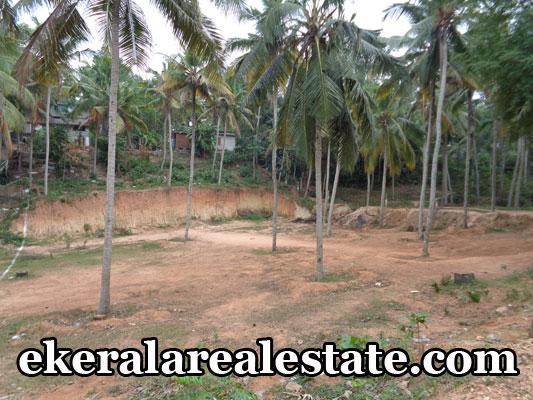 kerala real estate land brokers land house plots sale at Vellayani trivandrum kerala
