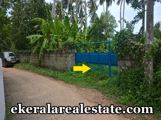 vellayani low price house plots sale trivandrum kerala real estate properties vellayani