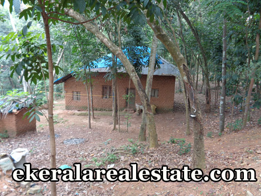 kerala real estate properties trivandrum malayinkeezhu land plots sale malayinkeezhu trivandrum