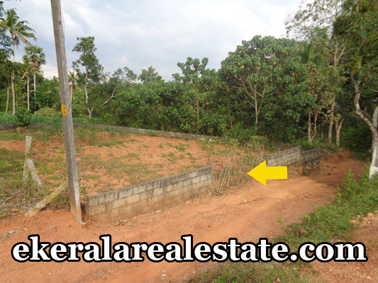 kerala real estate properties trivandrum venjaramoodu land plots sale venjaramoodu trivandrum