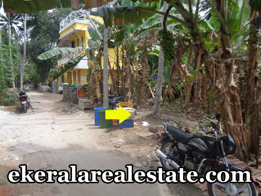 ulloor property sale land house plots sale at ulloor trivandrum kerala real estate properties