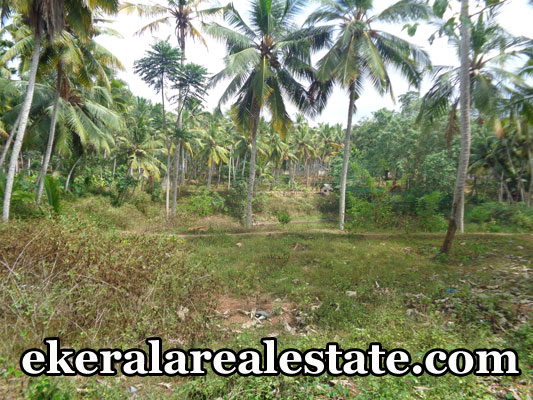 vizhinjam property sale land house plots sale at vizhinjam trivandrum kerala real estate properties