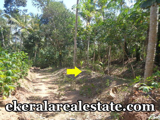 Land-Sale-Near-Sreekaryam-Chenkottukonam-Trivandrum-Chenkottukonam-Real-Estate-Properties-Kerala