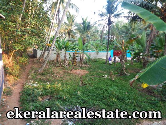 Peyad property sale land house plots sale at Peyad Chanthamukku trivandrum kerala
