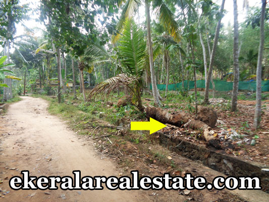 balaramapuram property sale land house plots sale at balaramapuram trivandrum kerala