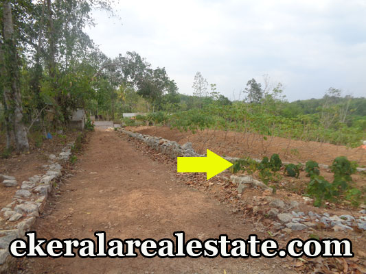 Residential house plot for sale at Karakulam Trivandrum real estate kerala Karakulam trivandrum properties
