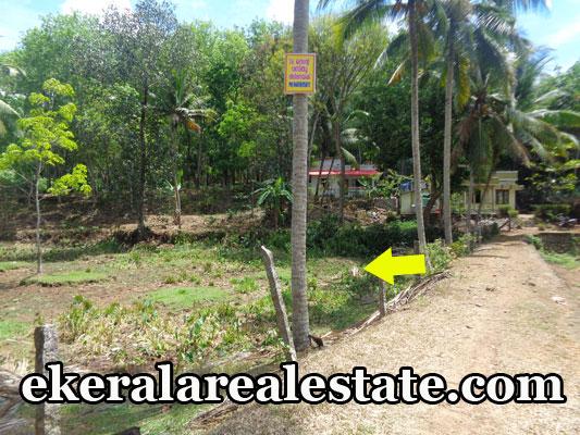Residential house plot for sale at Plavara Nanniyode Palode Trivandrum real estate kerala Plavara Nanniyode Palode trivandrum properties