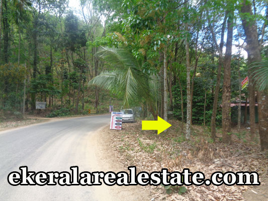 Residential house plot for sale at  Kallar Ponmudi  Trivandrum real estate kerala  Kallar Ponmudi  trivandrum properties