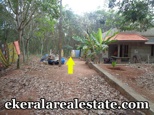Residential house plot for sale at Neyyattinkara Amaravila Chaikottukonam Trivandrum real estate kerala Neyyattinkara Amaravila Chaikottukonam trivandrum properties