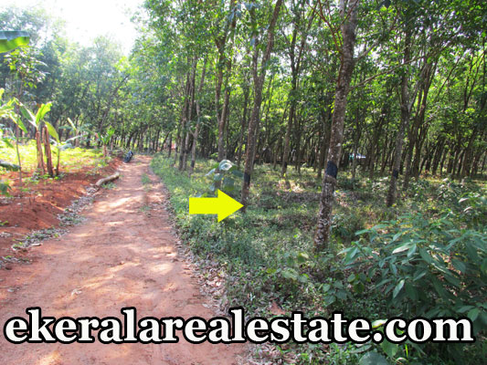 Residential house plot for sale at Venjaramoodu Trivandrum real estate kerala Venjaramoodu trivandrum properties