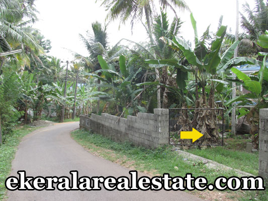 house plot for sale at Vattappara Kanakodu Trivandrum real estate kerala Vattappara Kanakodu trivandrum properties