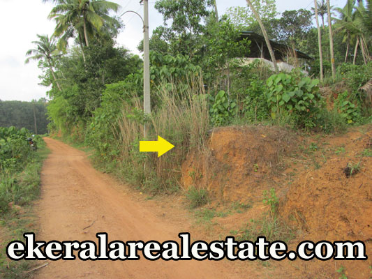 residential land for sale at Attingal Kaduvayil palli trivandrum real estate kerala Attingal Kaduvayil palli properties real estate