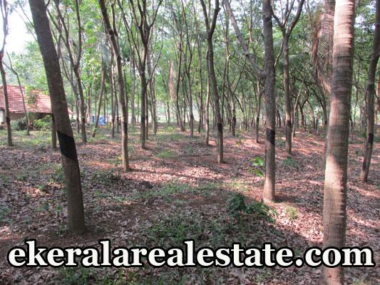Parippally Ezhippuram real estate properties land house plots sale at Parippally Ezhippuram trivandrum kerala