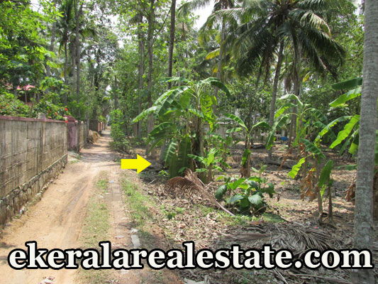 Kerala real estate trivandrum Thonnakkal Mangalapuram land plots sale at Thonnakkal Mangalapuram trivandrum kerala