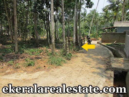 house plot for sale at Neyyattinkara real estate trivandrum properties Neyyattinkara kerala real estate
