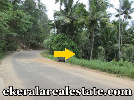 plot for sale at Kallayam Mukkola  real estate trivnadrum Kallayam Mukkola  properties kerala