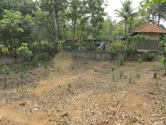 residential land for sale at Venjaramoodu Aliyad real estate trivnadrum properties Venjaramoodu Aliyad land sale