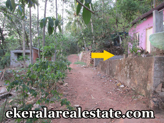 land and house for sale at Parayankavu Nedumangad trivandrum kerala properties Parayankavu Nedumangad