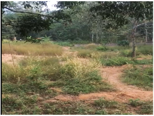 residential land for sale at Peyad Adjacent to Skyline park Villas trivandrum properties kerala trivandrum Peyad Adjacent to Skyline park Villas land sale