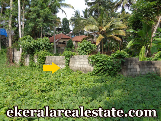 land sale at Chencery Lane Nalanchira real estate kerala properties land sale Chenchery Lane Nalanchira