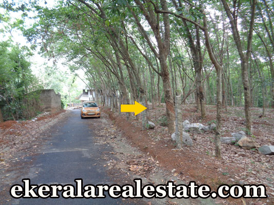house plot sale at Moongode Thachottukavu trivandrum real estate trivandrum kerala Moongode Thachottukavu real eatete propeties