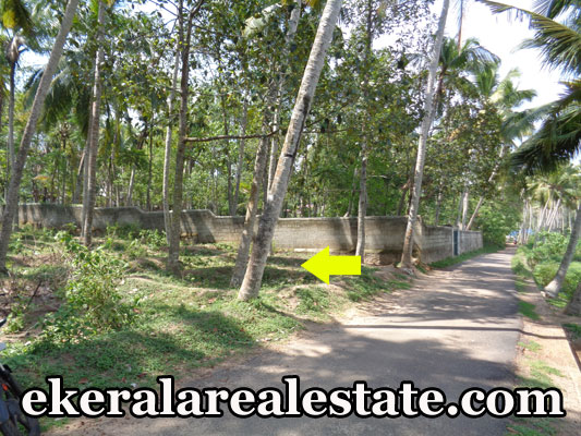 lorry access plot for sale at VedivechanKovil Balaramapuram Trivandrum real estate kerala