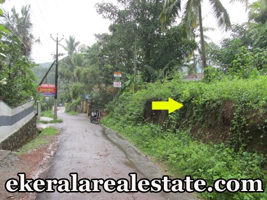 Karipur Nedumangad Trivandrum Nedumangad real estate kerala trivandrum house plot for sale at Karipur Nedumangad Trivandrum Nedumangad