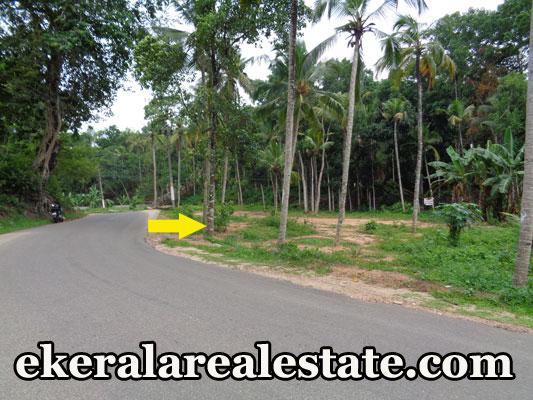 mainroad frontage 10 cent land for sale at Venjaramoodu Vembayam Thempammoodu Jn Trivandrum real estate kerala