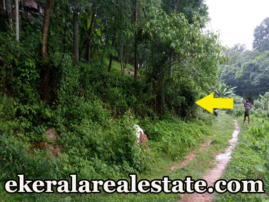 40 lakhs l acre rubber land for sale at Thattathumala Kilimanoor Trivandrum Kilimanoor real estate trivnadrum Thattathumala Kilimanoor Trivandrum