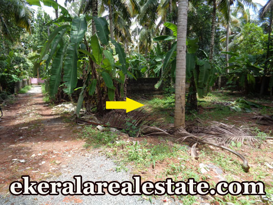 Lorry Access House Plot Sale at Kurishadi Junction Nalanchira Trivandrum Real Estate Properties Kerala