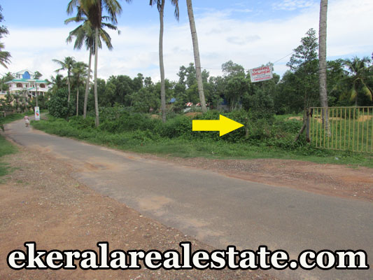 44 cents Land Plot for Sale at Mamam Attingal Trivandrum Kerala Real Estate Properties Trivandrum