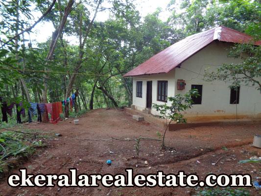 50 Cents Mini Lorry Access Rubber Land Sale at Vandanoor Ooruttambalam Pravachambalam Trivandrum Kerala Real Estate