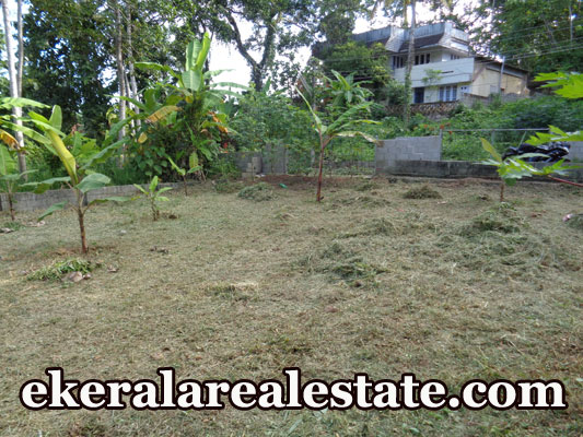 Real estate properties sale at Maruthoor Mannanthala Trivandrum kerala properties Maruthoor Mannanthala Trivandrum