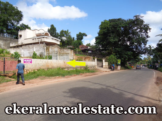 10 lakhs per cent Land Sale at Pathamkallu Nedumangad Trivandrum Nedumangad Real Estate Properties Nedumangad Land Plots