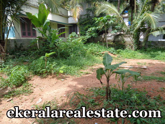 house plot for sale at Pravachambalam Ooruttambalam Road Pravachambalam real estate kerala trivandrum Pravachambalam