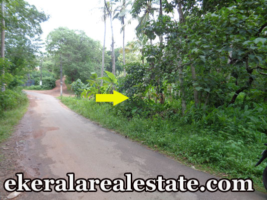 22 cent lorry access plot for sale at Vellalloor Kilimanoor real estate trivandrum Vellalloor Kilimanoor plot sale