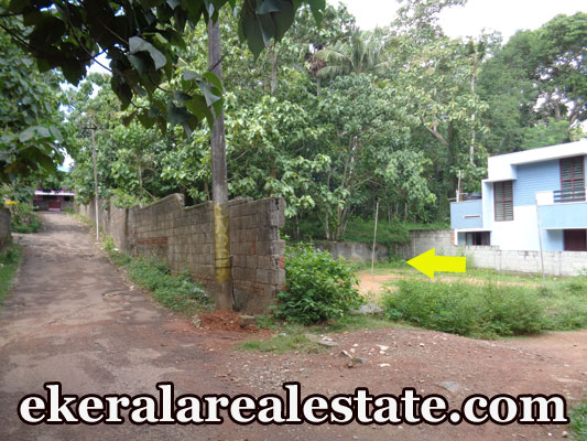 house plot sale at Thaivila Mangattukadavu Thirumala Trivandrum Thirumala Real Estate properties kerala
