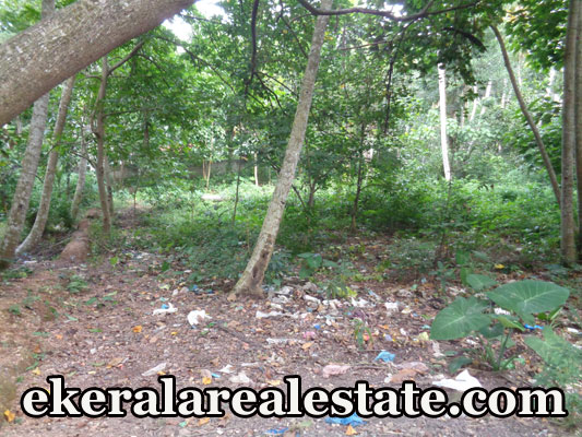 30 cent house plot sale at Mukkola Vizhinjam Trivandrum Vizhinjam real estate kerala trivandrum Mukkola Vizhinjam Trivandrum Vizhinjam