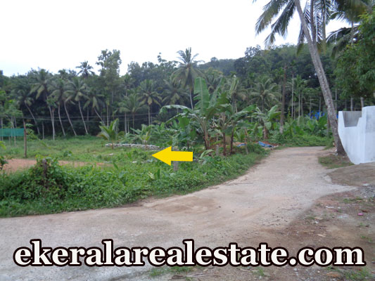 kerala real estate trivandrum Palode Nedumangad Trivandrum Kerala house plot for sale at Palode Nedumangad Trivandrum Kerala