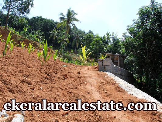 Residential land plot for sale at Cheriyakonni Vattiyoorkavu Trivandrum real estate kerala Cheriyakonni Vattiyoorkavu Trivandrum