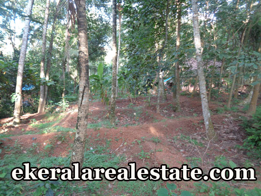 3 lakhs per Cent land for sale at Naruvamoodu Pravachambalam Trivandrum real estate kerala land sale