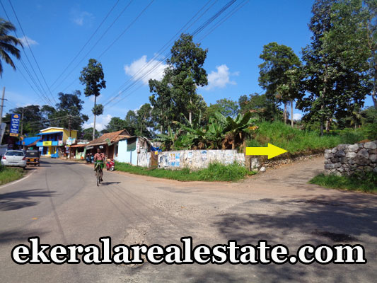 land for sale at Aruvikkara Kerala Aruvikkara trivandrum real estate kerala properties sale