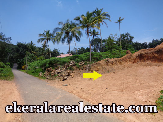 Tar road frontage Land Subhash Nagar Powdikonam Sreekariyam Trivandrum  Kerala real estate properties