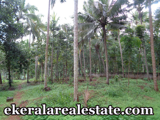 kerala real estate Meppookkada Malayinkeezhu Trivandrum Kerala land sale Meppookkada Malayinkeezhu real estate properties