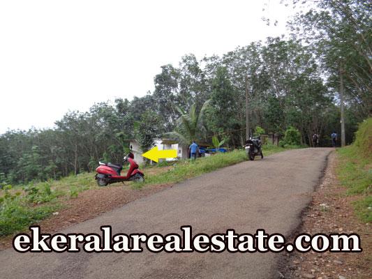 Residential Land For Low price Sale in Karipur Nedumangad Trivandrum Nedumangad Trivandrum Real Estate Kerala
