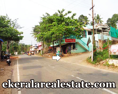 Residential Lorry Plot For Sale at Pathamkallu Nedumangad Trivandrum Nedumangad Real Estate Properties