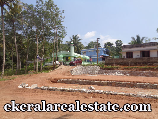 Cheap rate house for sale at Kaipadi Karakulam Trivandrum real estate kerala house sale