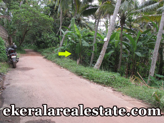 plot for sale at Trivandrum Mangattukadavu Thirumala real estate kerala land sale